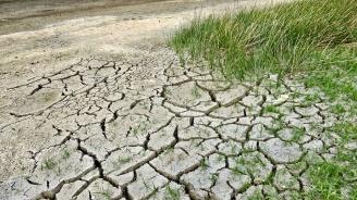 5 богати страни обещаха почти 6 млд. долара за Зеления фонд за климата