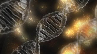СЗО създава регистър на модификациите на човешкия геном