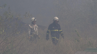 """Разследват три версии за пожара в парк """"Борова гора"""" в Стара Загора"""