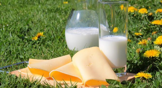 Млечни продукти, плодове и зеленчуци за учениците благодарение на програма на ЕС