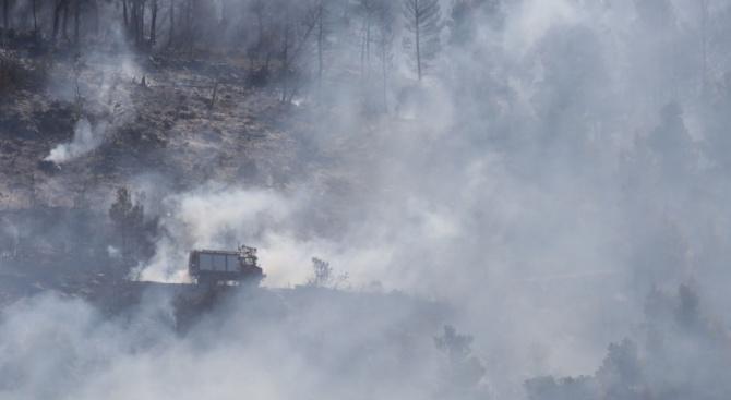 35 хектара горски площи изгоряха при пожар вАнталия