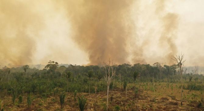 В деня на Амазония природозащитната организация WWF предупреждава, че опустошителните