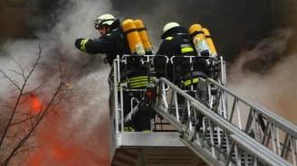 МВР: Пожарът в Бухово е ограничен, няма загинали и пострадали