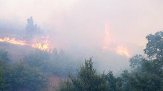 Не са установени замърсявания на въздуха при самозапалванията на закритото общинско сметище в Дупница