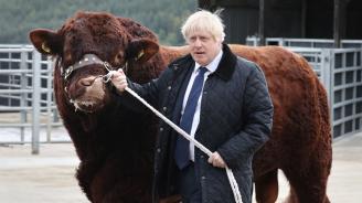 Британски депутати се готвят да съдят Борис Джонсън