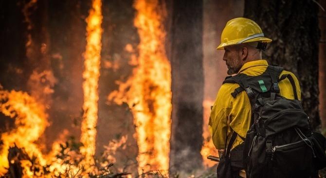 Над 160 огнеборци се борят днес да овладеят голям пожар,