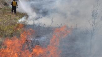 Шест екипа на пожарната, доброволци и горски служители гасят пожар край Котел