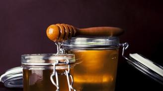 Пчелари от пет страни представят продукцията си във Варна