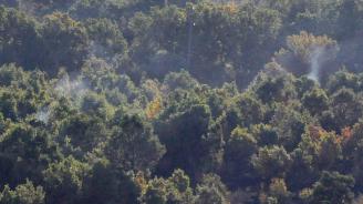 Пожарът край Котел е бил локализиран