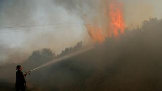 Пожарите в Гърция са взели жертва
