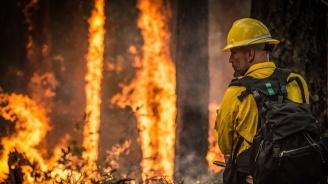 Голям горски пожар бушува край Атина