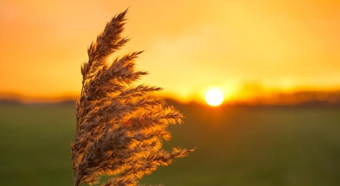 Очаква ни поредният слънчев ден с летни температури и почти