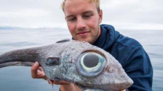 Норвежец улови необичайна риба