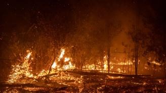 В страната вчера са гасени над 400 пожара