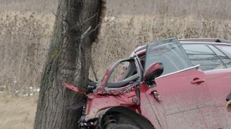 21-годишен заби колата си в крайпътно дърво и пострада