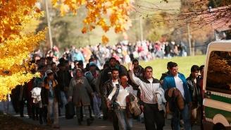 Три четвърти от сирийските мигранти в Германия получават помощи за безработни