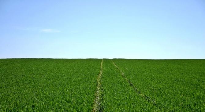 Българската асоциация на собствениците на земеделски земи призова за нови