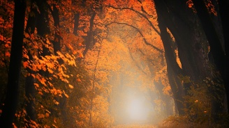 Как да направите правилно пожелание в деня на есенното равноденствие?