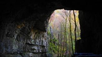 Учени откриха миниатюрни древни сечива в пещера в Шри Ланка