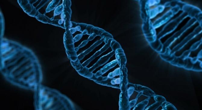 Генна мутация води до остра миелоидна левкемия
