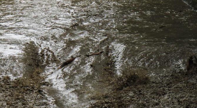 Заради замърсяване на река проверяват фирми в Западната промишлена зона на Русе