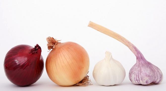 Консумацията на лук и чесън намаляват риска от развитие на