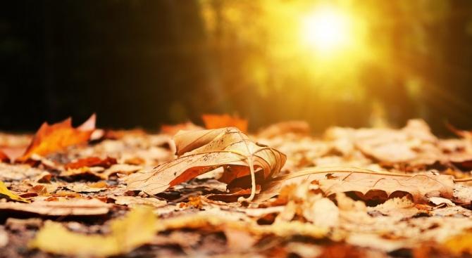 Хубавото време се завръща, златна есен до Димитровден