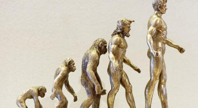 Учени опровергаха хипотеза за човешката еволюция