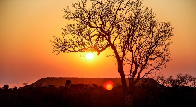 Древни хора са се заселили на остров Мадагаскар преди 11 000 години