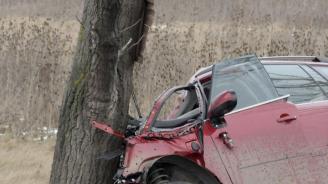 Кола се заби в дърво на пътя Дулово-Силистра, двама молдовци са загинали на място