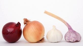 Консумацията на лук и чесън намаляват риска от рак на гърдата