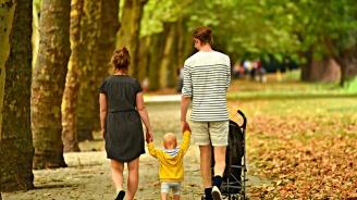 По повод на Световния ден на ходенето в Плевен ще изкачат пеша възвишението до Панорамата