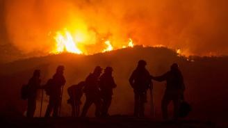 Горските пожари в Австралия взеха първите си жертви