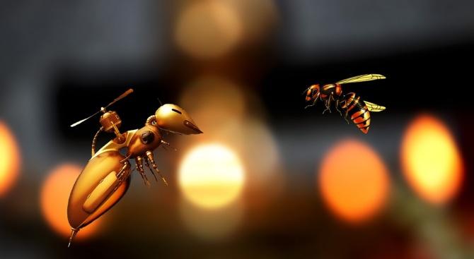 Пчела-робот учи деца от Кърджали да програмират чрез задаване на команди