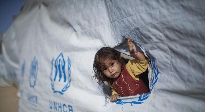Най-малко 1,3 милион деца и младежи са официално задържани всяка