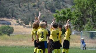 Кабинетът отпуска близо 2,5 млн. лева за физическо възпитание и спорт в училищата и детските градини
