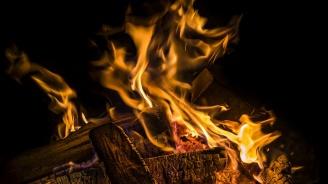 Дървата остават предпочитан начин за отопление сред жителите на община Разград