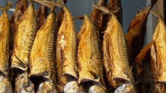 БАБХ изтегли над 250 кг пушена риба от Румъния, заразена с Листерия