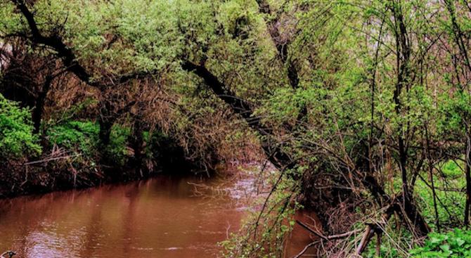 Оцветени води с неприятна миризма се изливат системно в река