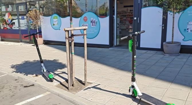 Пред Novini.bg столичани споделиха своя опит при управлението на електрически