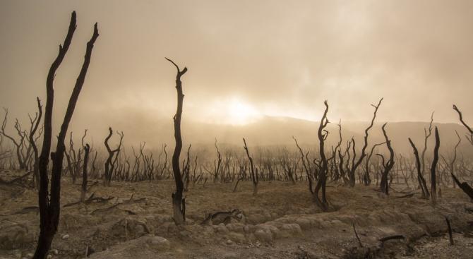 В резултат на климатичните промени феномените Ел Ниньо стават по-силни