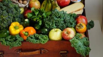 Малки земеделски стопани ще могат да кандидатстват за  преработка на собствена селскостопанска продукция