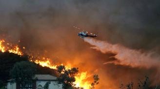 Голям горски пожар в Северна Калифорния. От МВнР разкриха дали има пострадали българи