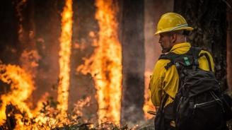 Горски пожар евакуира най-малко 40 000 души в Калифорния