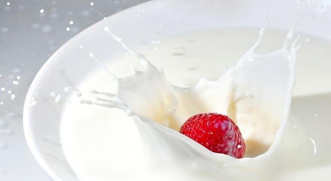 Ежедневната консумация на кисело мляко намалява риска от белодробен рак,