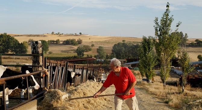 Биофермери: Не взимайте последната риза от гърба на земеделеца!