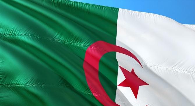 Алжирците подновиха протестите си в Деня на революцията