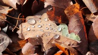 С какво време идва ноември месец?