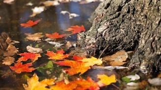 Зима и циганско лято през ноември