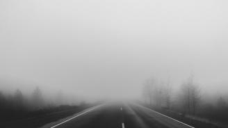 Гъста мъгла в прохода Петрохан
